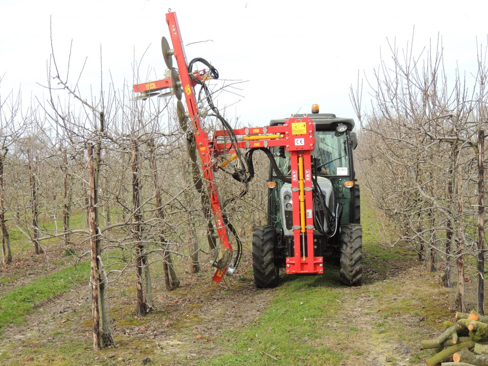 Bmv Orchard Trimmer Fl800p Np Seymour Purveyors Of